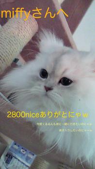 m_200902141048002-90875.jpg