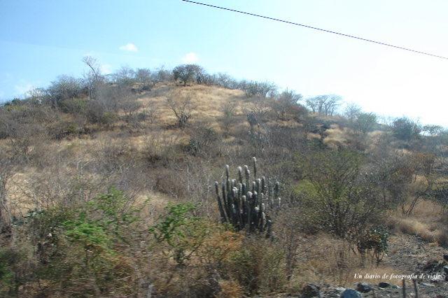 2006年3月16日から23日 グアテマラ ベリーズ メキシコ 272_00.jpg