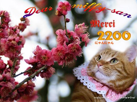 2200niceE382ABE383BCE38389(toE38080miffyE296B3)-db1b6.jpg